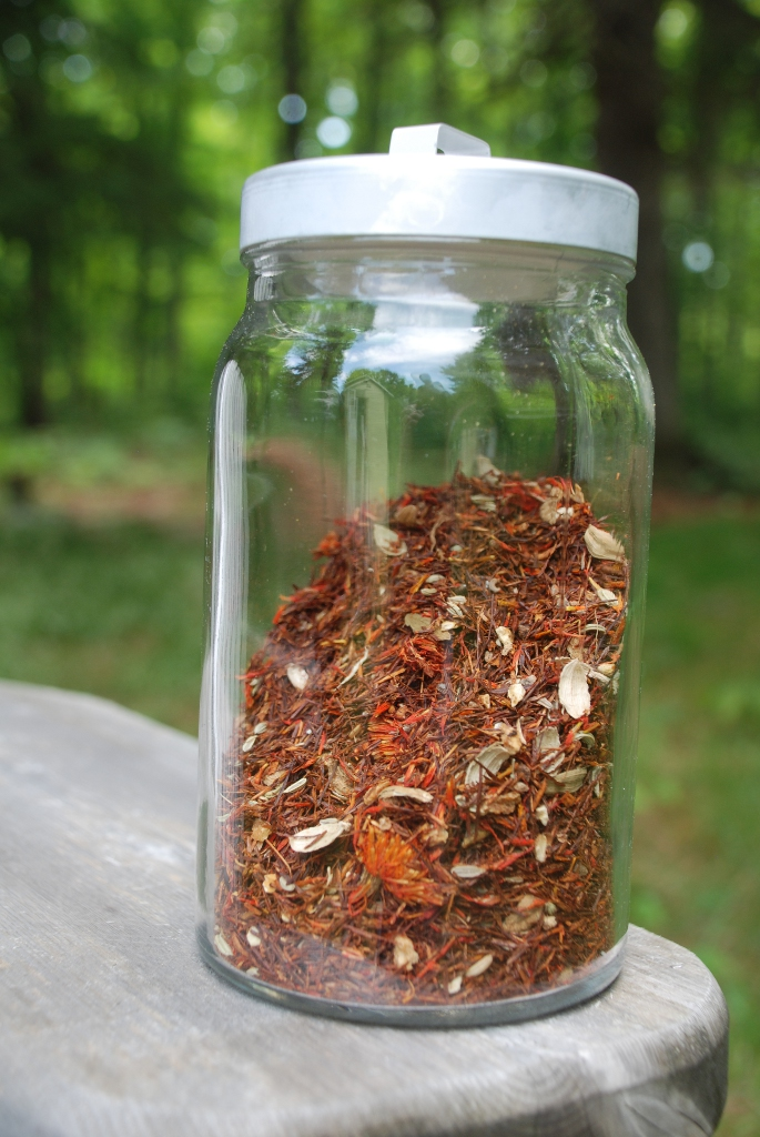 Red Maple Rooibos Spice